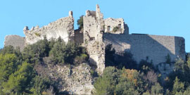 Château de Forcalqueiret